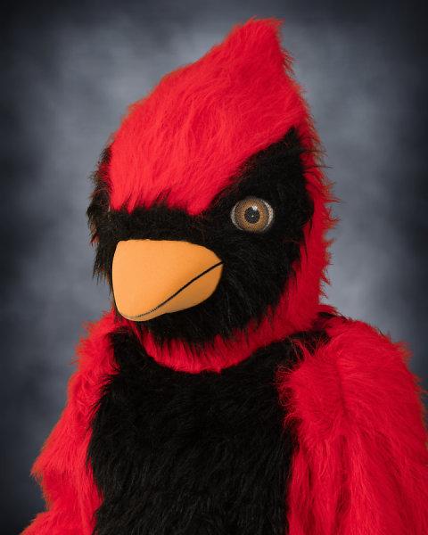 Philip Cardinal : School Mascot